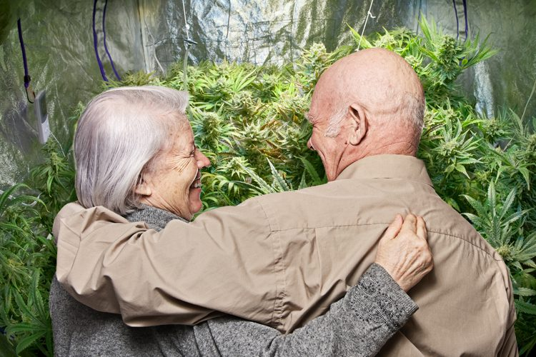 Pacjenci medycznej marihuany