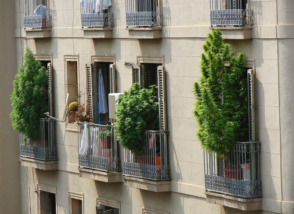 Katalonia legalizuje