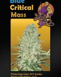 Blue Critical Mass