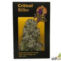 Critical Bilbo