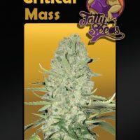 White Critical Mass