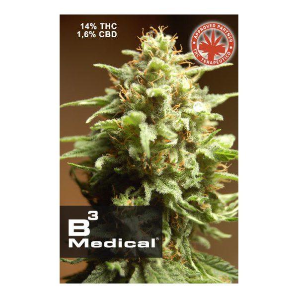 B3 Medical