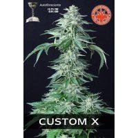 Custom X Auto