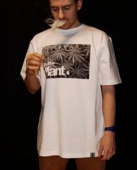 Koszulka Just a Plant szara