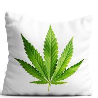 Poduszka Zielony Liść