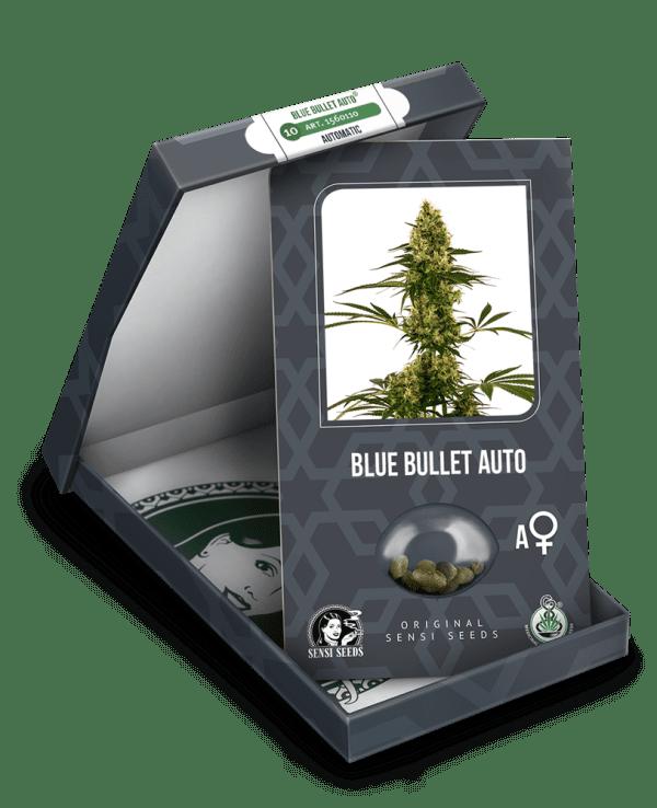 Blue Bullet Auto