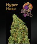 Hyper Haze