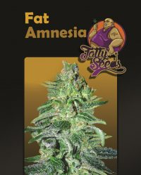 Fat Amnesia